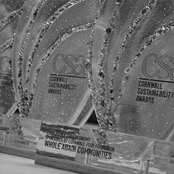 Recycled glass and acrylic awards