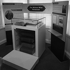 Museum display case and interpretation